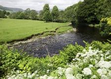 Река Hodder Стоковые Фото