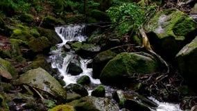 Река Ilse водопада в горах Harz видеоматериал