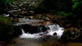Река Ilse водопада в Harz сток-видео