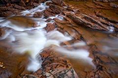 Река Ilse в национальном парке Harz стоковые изображения rf