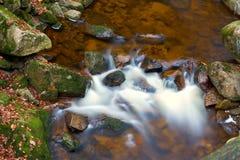 Река Ilse в национальном парке Harz стоковая фотография