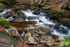 Река Ilse в национальном парке Harz стоковое фото
