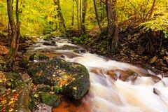 Река Ilse на Harz стоковые изображения rf