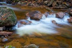 Река Ilse на Ilsenburg в национальном парке Harz стоковые фотографии rf