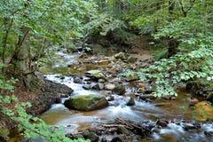 Река Ilse стоковые фотографии rf