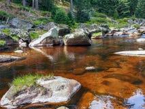 Река Izera Стоковые Изображения