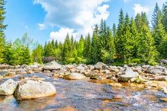 Река Jizera вполне утесов на солнечный летний день, гор гранита Jizera, чехии стоковое изображение