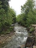 Река Kagawong Стоковые Изображения