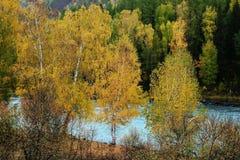река kanas Стоковое фото RF