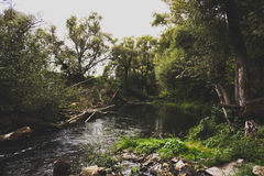 Река Kashirka стоковые фото