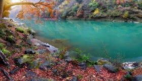 Река katsura Стоковое Фото