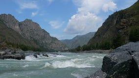 Река Katun на ясный день сток-видео