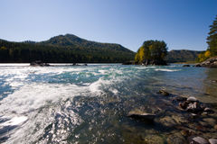 река katun Стоковая Фотография RF