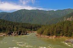 река katun Стоковое Изображение RF