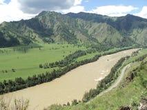 Река Katun Стоковые Изображения RF