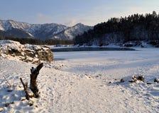 Река Katun Стоковые Изображения