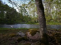 Река Keila Стоковое фото RF