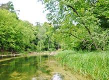 Река 6 Krutynia Стоковая Фотография RF