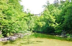 Река 10 Krutynia Стоковые Изображения RF