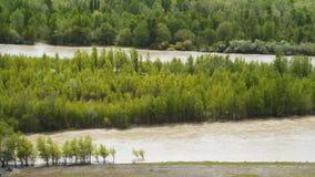 Река Kura в Грузии видеоматериал