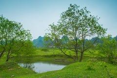 Река Lijiang с обеих сторон пастырского пейзажа Стоковое Изображение RF