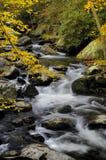 Река Little Pigeon на Tremont в больших закоптелых горах Стоковые Фотографии RF