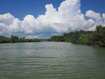 Река Loay, Bohol Филиппины стоковые фотографии rf