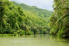 Река Loboc на острове Bohol, Филиппинах стоковые фотографии rf