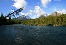река louise озера кемпинга смычка Стоковое Изображение RF