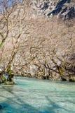река louros Стоковые Фото