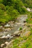 Река Lyn в Lynmouth Девоне Стоковые Фото