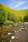 Река Lyn около Lynmouth Девона Стоковые Изображения