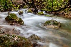 Река Majaceite Стоковая Фотография
