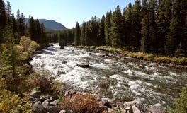 река maligne яшмы Стоковое Изображение