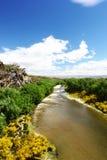 Река Manuherikia, след рельса Otago центральный, Новая Зеландия Стоковые Изображения RF