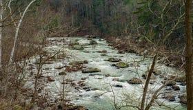 Река Maury, Вирджиния, США - 5 Стоковые Изображения