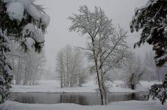 Река Merced сцены Snowy стоковое изображение rf