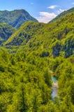 Река Milesevo стоковая фотография
