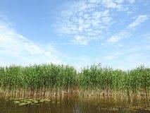 Река Minija и красивое облачное небо Литва Стоковые Фото