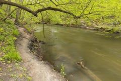Река Minneopa Стоковое Изображение