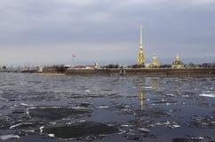 Река Neva в Санкт-Петербурге стоковые фотографии rf