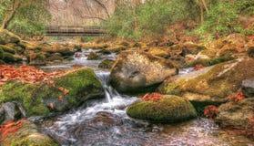Река Oconaluftee Стоковое Изображение RF