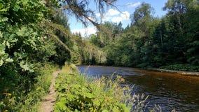 Река Otava, чехия стоковая фотография