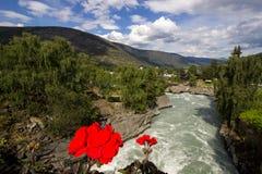 Река Otta в Lom в Норвегии Стоковое фото RF