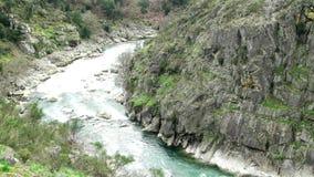 Река Paiva сток-видео