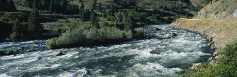 Река Payette Стоковые Фото