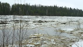 Река Pechora во время замораживания-вверх и таяния сток-видео