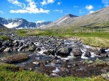 река petrelius Стоковая Фотография