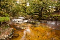 Река Plym Стоковые Фотографии RF