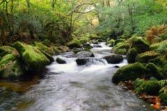Река Plym Стоковое Фото